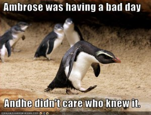 funny-pictures-penguin-has-a-bad-day[1]